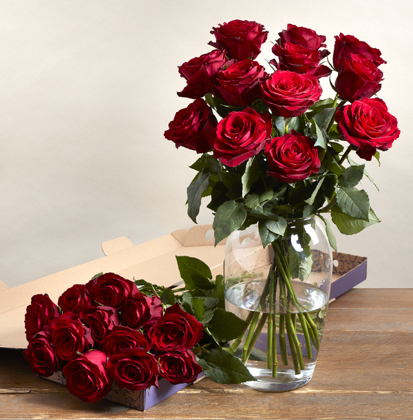 The Letterbox Dozen Red Roses - £22.99