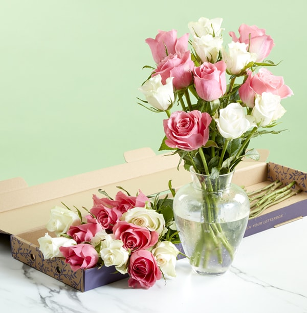 The Letterbox Pink and White Roses - £22.99