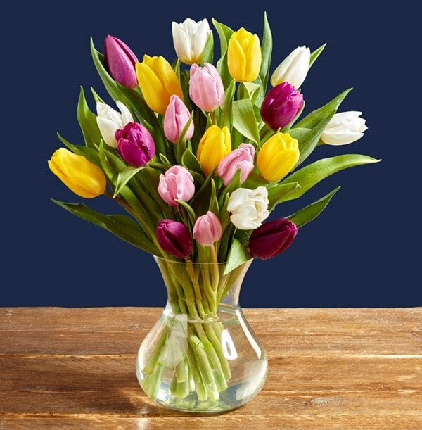 The Mixed Tulip Bouquet - £24.99