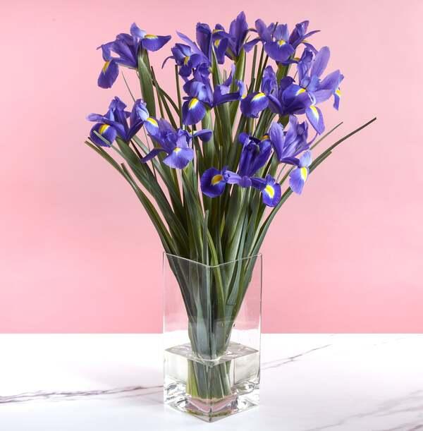 The Blue Iris Letterbox - £18.99
