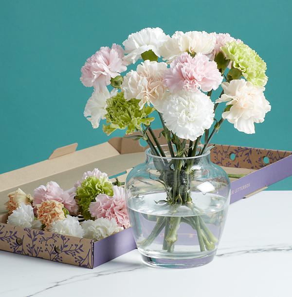 The Letterbox Pastel Unicorn Carnations - £17.99