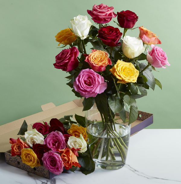 The Letterbox Mixed Roses - £20.99
