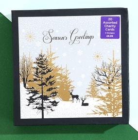 Premium Boxed Winter Scene Christmas Card Set - Pack of 20