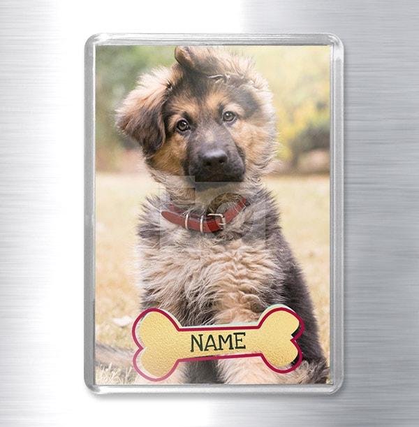 Pet Dog Photo Magnet - Portrait