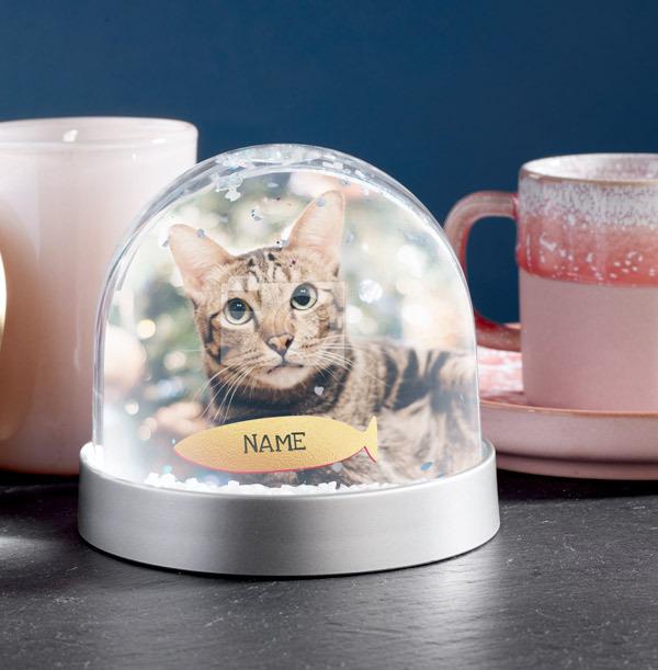 Cat Photo Upload Snow Globe