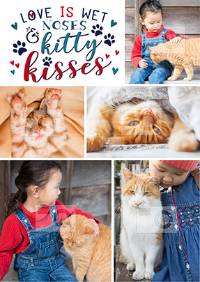 Kitty Kisses Multi Photo Large Poster